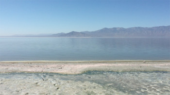 Salton Sea North Shore